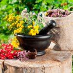 Лечение бесплодия у мужчин народными средствами: рецепты и рекомендации