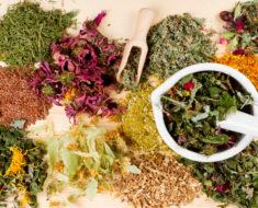 эффективные травы для лечения простатита